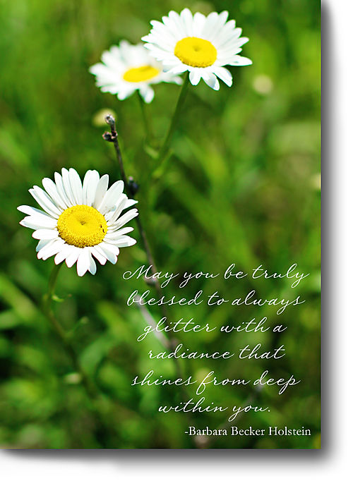Thursday's thought radiance daisies for blog