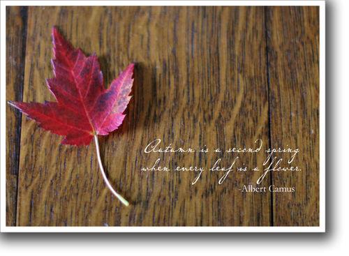 Thursday's thought leaf for blog
