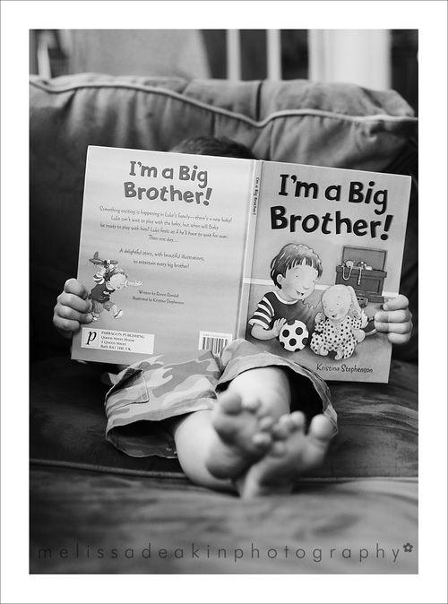 Big brother book for blog