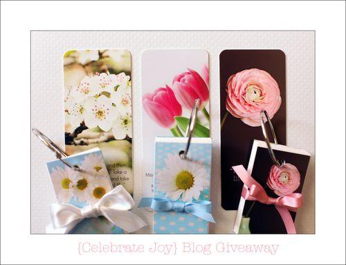 Blog Giveaway Celebrate Joy