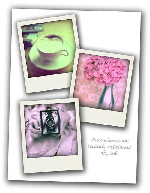 Polaroid blog post