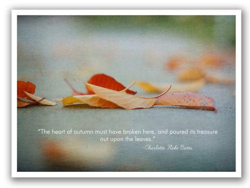 Fallen leaves blog