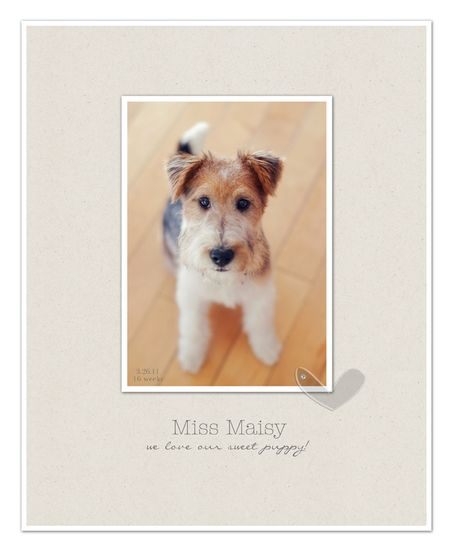 Miss maisy page