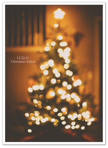 December daily 12.22 photoblgog