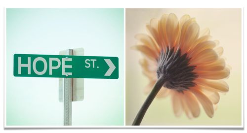 Diptych five life is beautiful