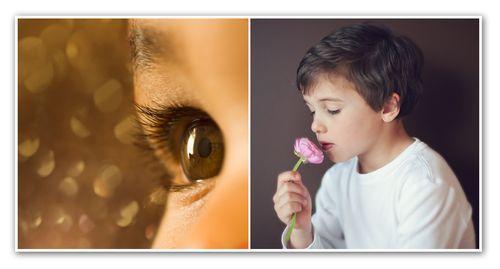 Diptych no.34 senses