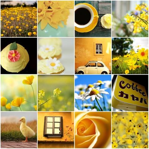 Yellow_flickr_mosaic